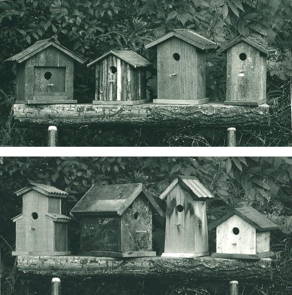 group of 8 birdhouses, 1990s, Larry Calkins
