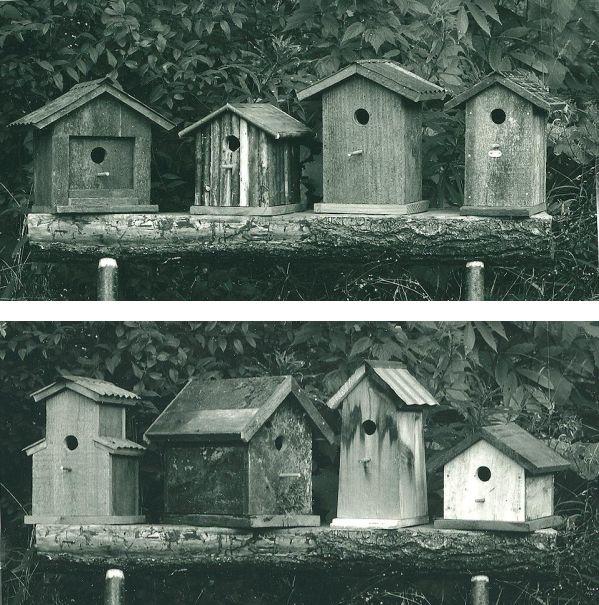 group of 8 birdhouses, 1990s, Larry Calkins