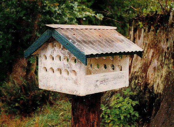 birdfeeder, 1990s, Larry Calkins