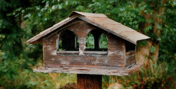 Spring – Birds – Birdhouses